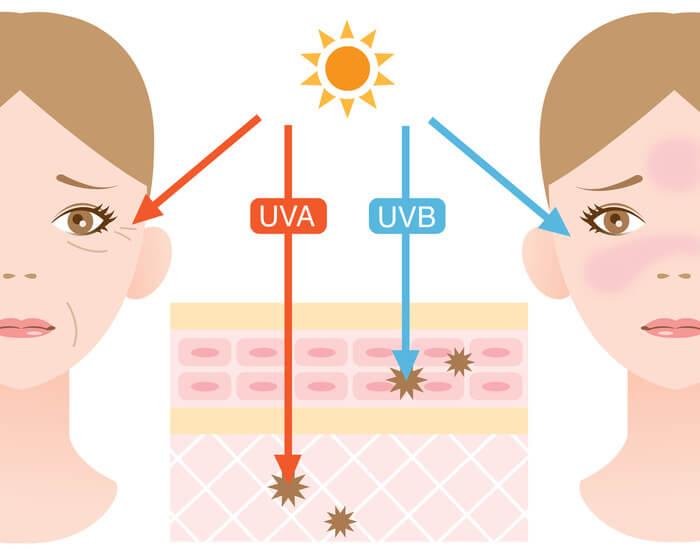 Tác hại của tia UV